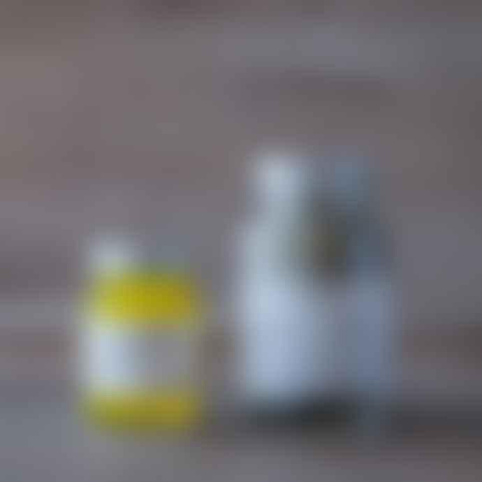 Yellow Gorse  Muscle Kit
