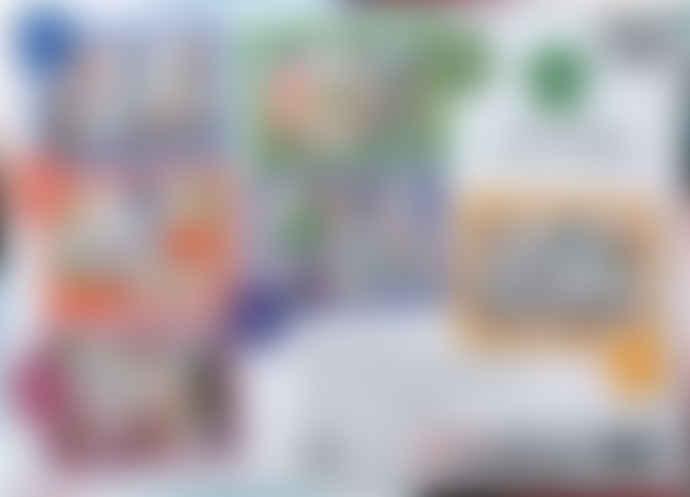 Paul Lamond Games Roald Dahl's Fantastic Mr Fox 250 Piece Jigsaw Puzzle Age 6+