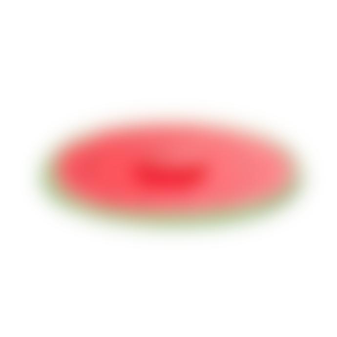 Charles Viancin Watermelon Silicone Lid 9 Inch