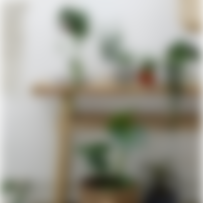 Bloomingville Pot Ø22xH8 cm in flat terracotta