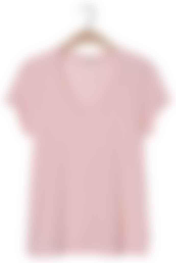American Vintage Wild Rose Jacksonville Short Sleeve T Shirt