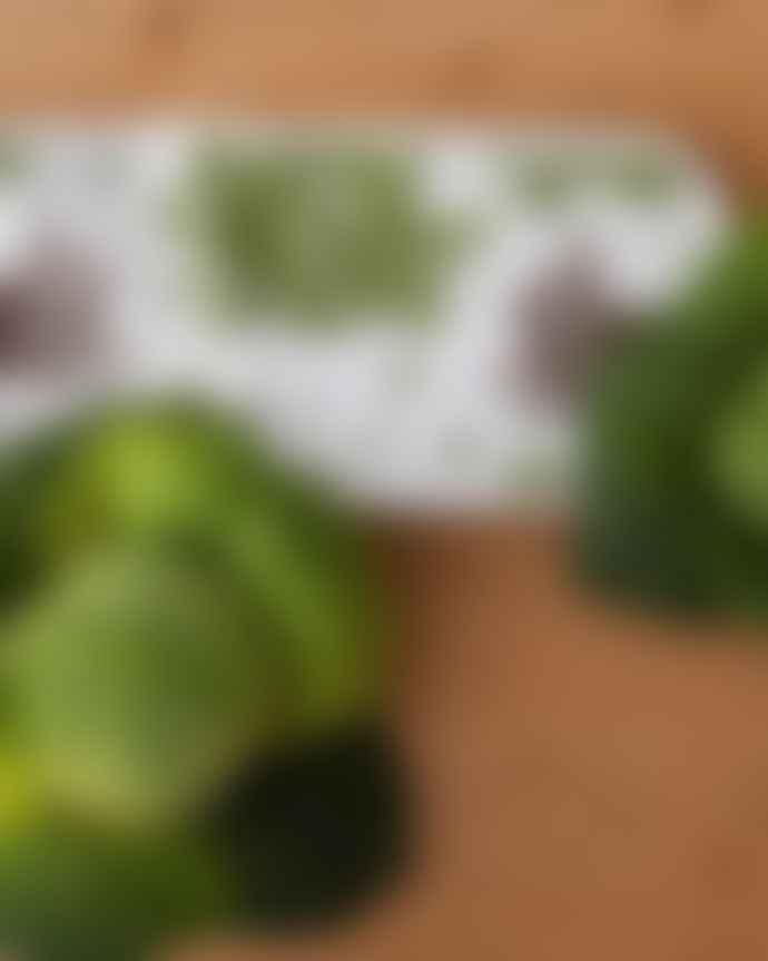 Thornback & Peel Double Oven Glove Rabbit Cabbage