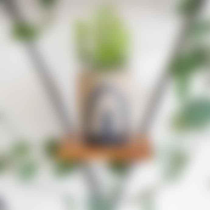 Madam Stoltz Rough Glazed Rainbow Plant Pot