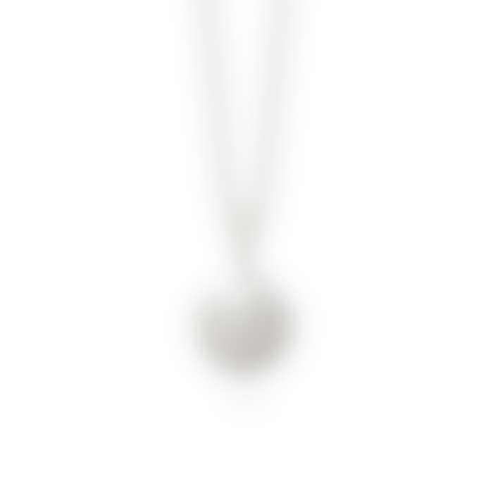 Daisy London Large Shell Necklace