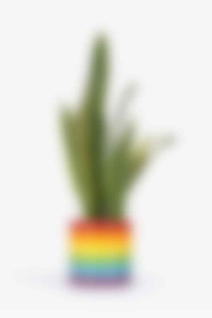 DOIY Design Rainbow Pot