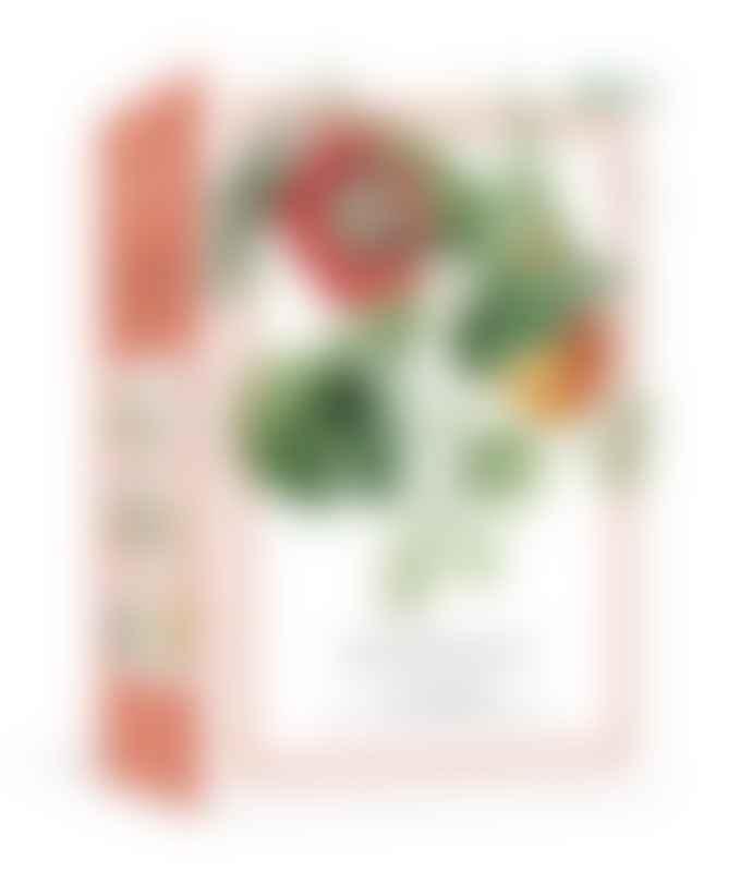 Botanicals 100 Postcards