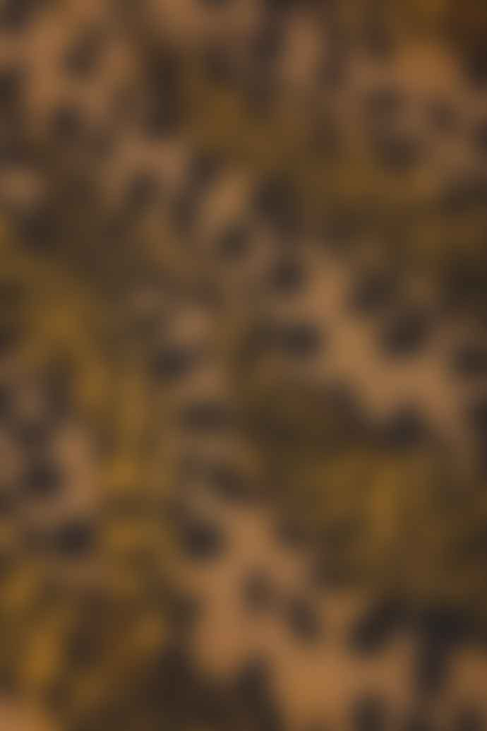 Fabienne Chapot Bobo Skirt Retro Panther