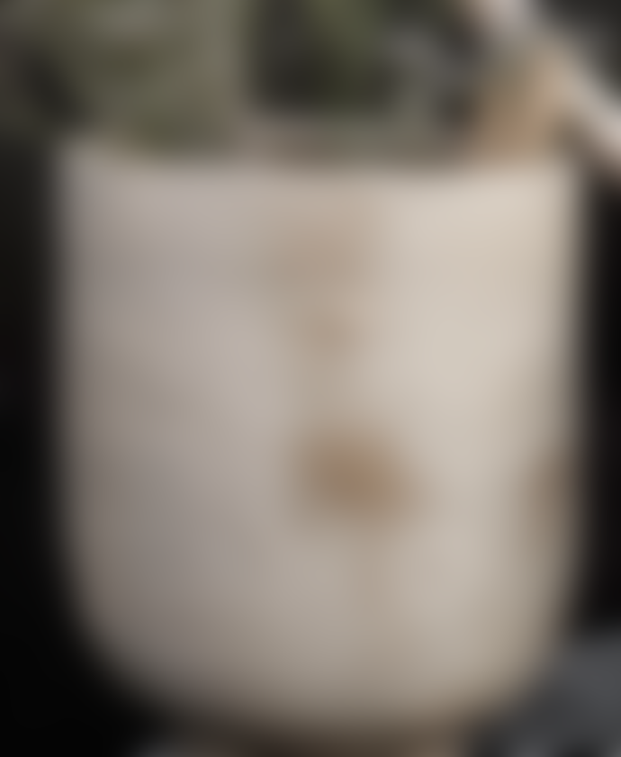 Society of lifestyle  Artist Planter 32x22cm