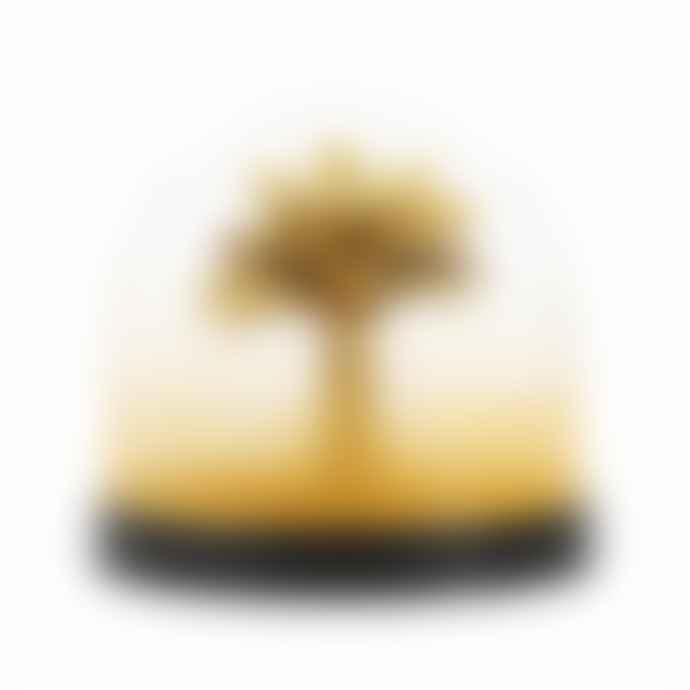 &klevering Gold Palm Tree Wonderball