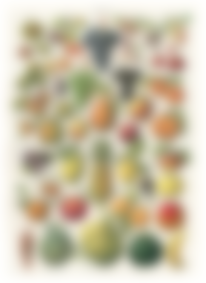 Cavallini & Co Fruit Chart Poster