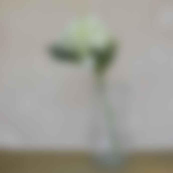 livs Pair of Hydrangea Short Stems 50x16cm