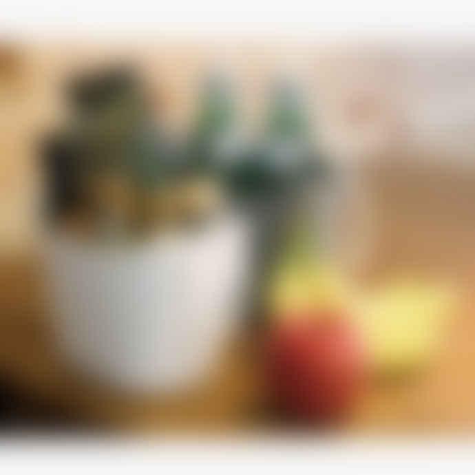 Hachiman Multipurpose Basket Balcolore - Coffee Large