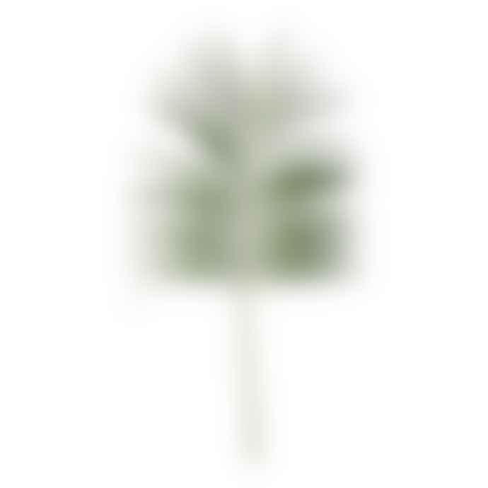 Lene Bjerre Palm Spray