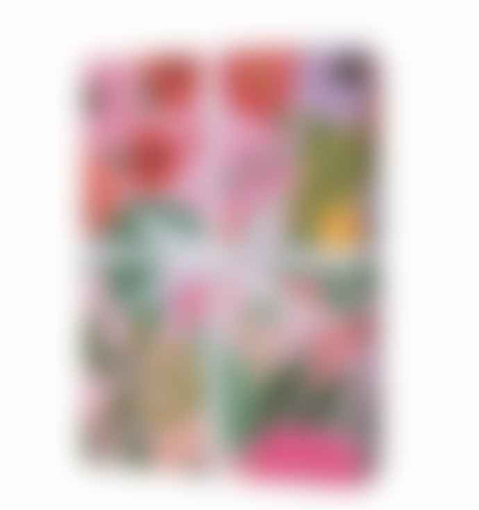 Rifle Paper Co. Garden Party Three Wrapping Paper Sheets