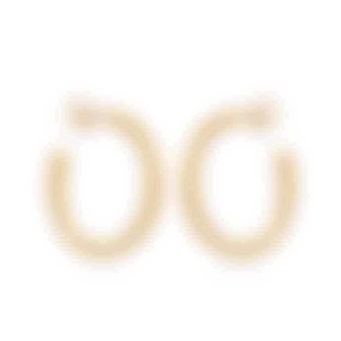 Cabbage White Gold Midi Hoop Earrings