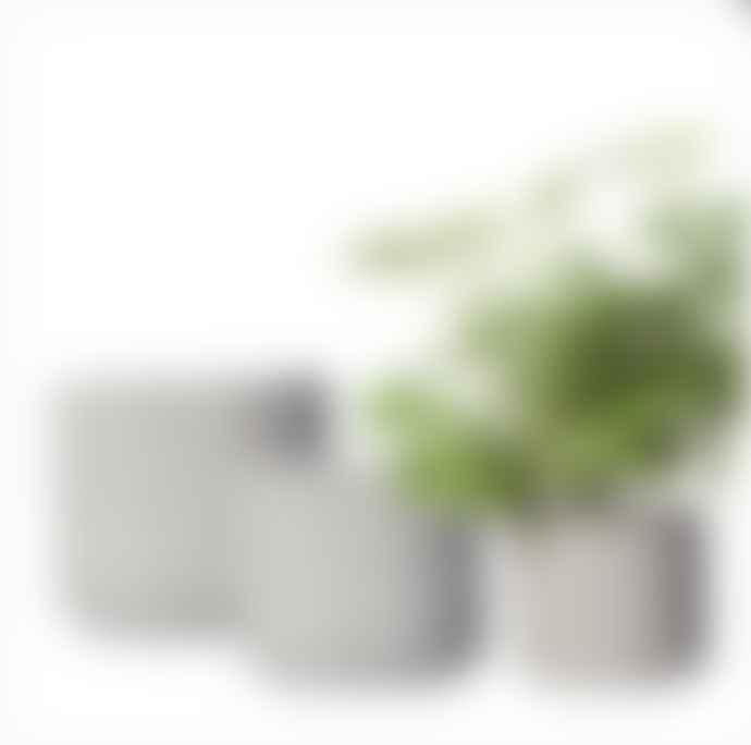 Wikholm Form Large Nea Concrete Planter