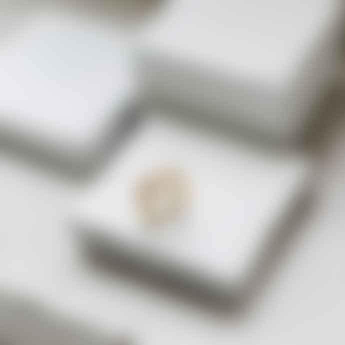 GINA MELOSI Silver Lining Ring 1