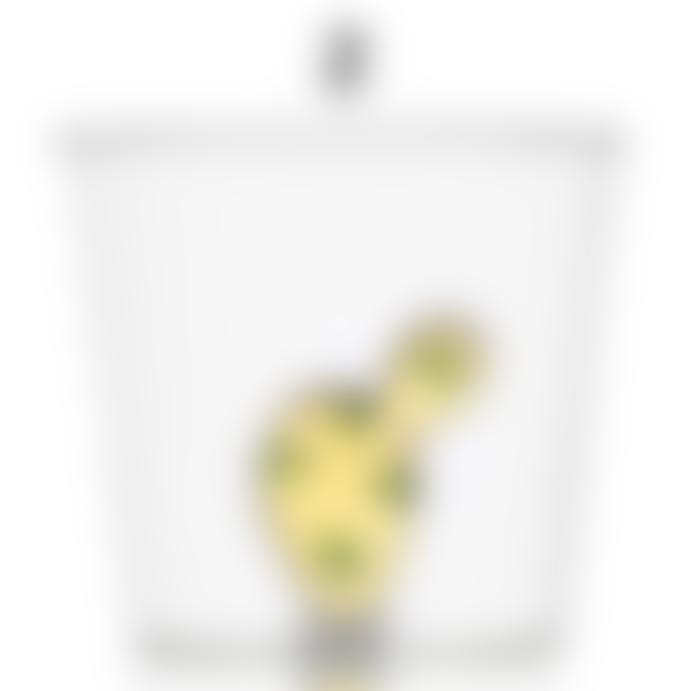 Ichendorf Milano DESERT PLANTS - Glass Tumbler