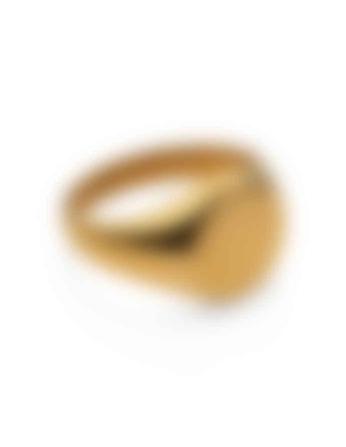 Nordic Muse Waterproof 18k Gold Round Signet Ring RG - 0022