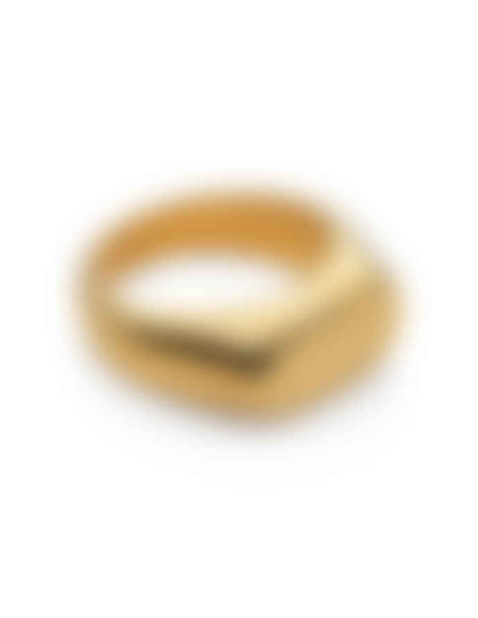 Nordic Muse Waterproof 18k Gold Oval Signet Ring