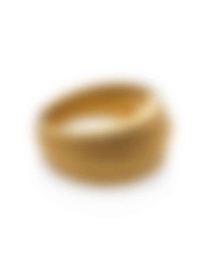 Nordic Muse Waterproof 18k Gold Layered Dome Ring RG - 0030