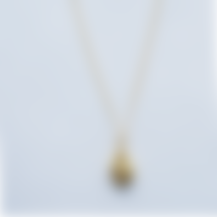 bon bon fistral Gold Plated Cowrie Pendent