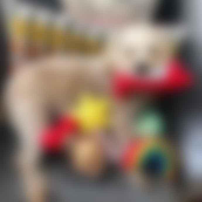 Hiro + Wolf Magic Wand Squeaky Dog Toy
