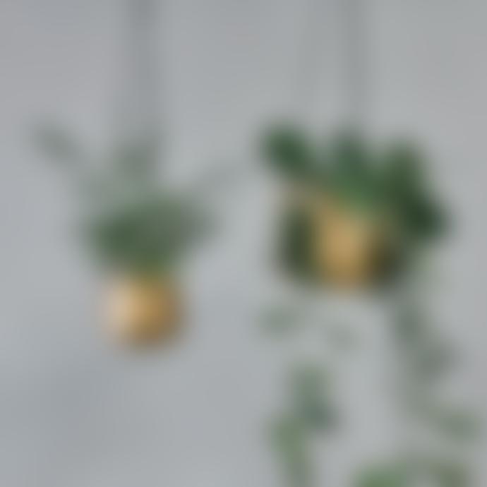 Nkuku Atsu Brass Hanging Planter  Large