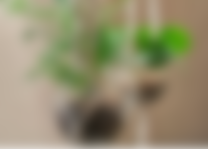 Nkuku Small Basua Hanging Planter
