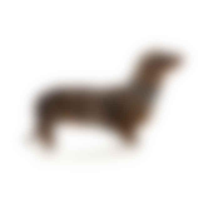 Northcote Dog Collar Small