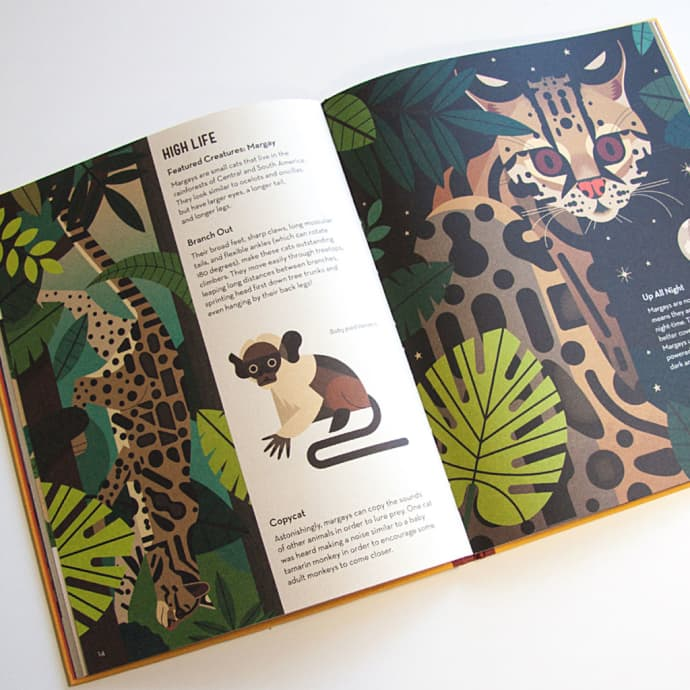 Flying Eye Books Crazy About Cats Book