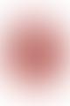 Emilia Mala Emma Red Silk Scarf