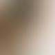 Machete Blonde Tortoise Clare Earrings