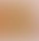 Parkminster Big Orange Blossom Soy Candle