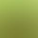 Stasher Small Lime Reusable Silicone Snack Bag