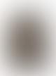 Eisdieler Olive Sweatshirt