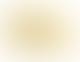 Saucony  Saucony Women´s Jazz Original Vintage Yellow/Black