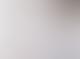 Partimento Melange Grey Chubby Penny Farthing Sweatshirt