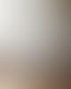 Vitra Black Lacquer Finish Alder Wood Eames House Bird