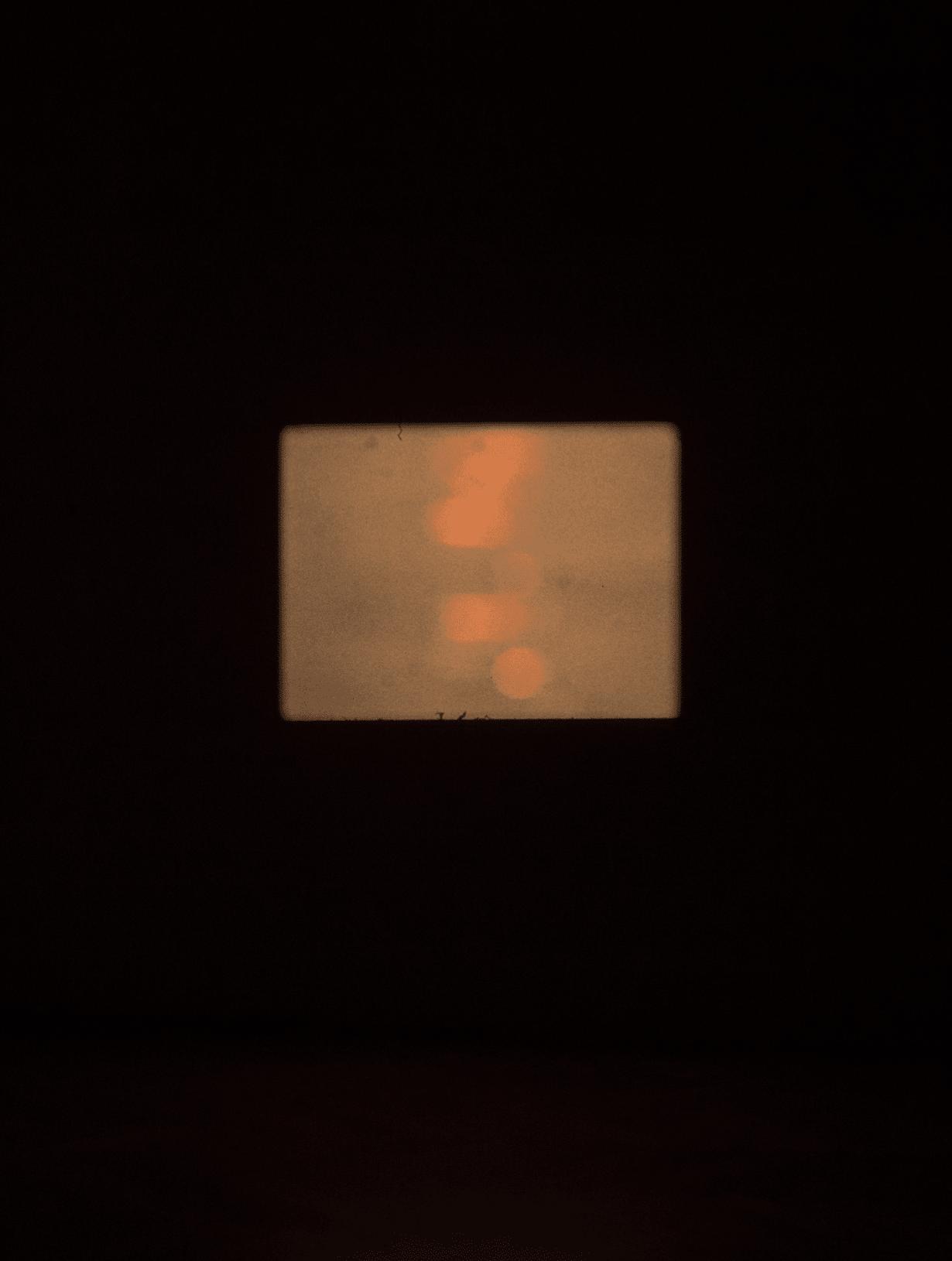 Screening - the orange tape (Binta Giallo)