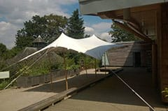 This stretch tent looks great used as a gazebo