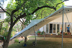 Manipulating the tent to go under existing trees in the garden