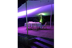 whtie stretch tent pink lights surrey