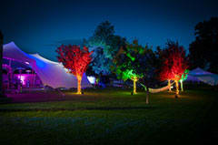 Amazing lighting bringing the stretch tents to life