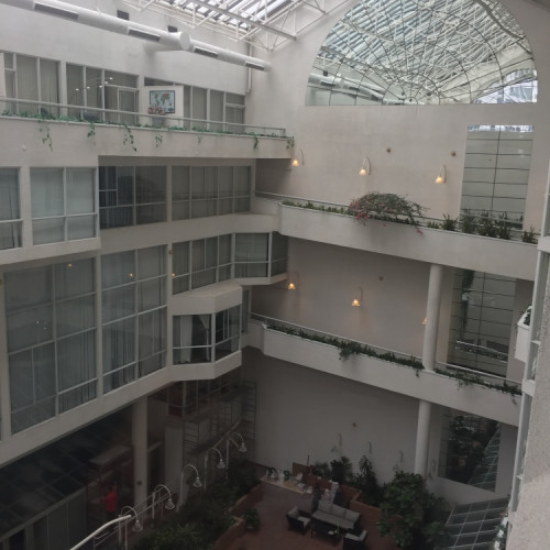 Another view into atrium