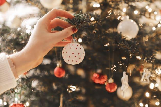 Mon premier Vrai sapin de Noël