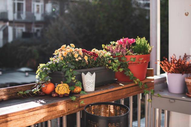 Notre balcon d'automne