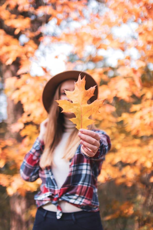 Week-end d'automne dans le Veluwe