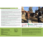 Addis Ketema - Site Summary .pdf