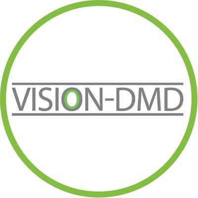 Vision DMD logo